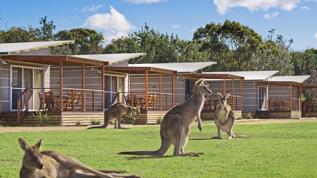 Best Caravan Parks Australia Discovery Parks Glamping