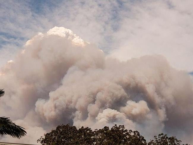 Emergency warnings for Newcastle, Blue Mountains