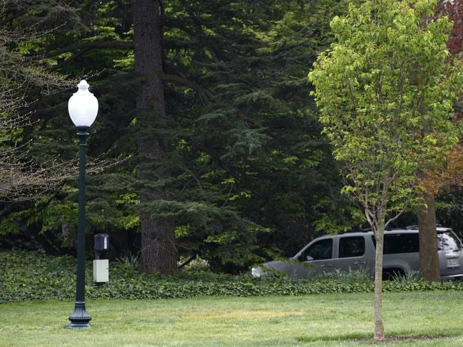 An empty area where the tree was planted. Picture: AP