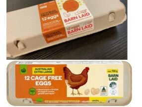 The eggs being recalled for potential salmonella contamination.
