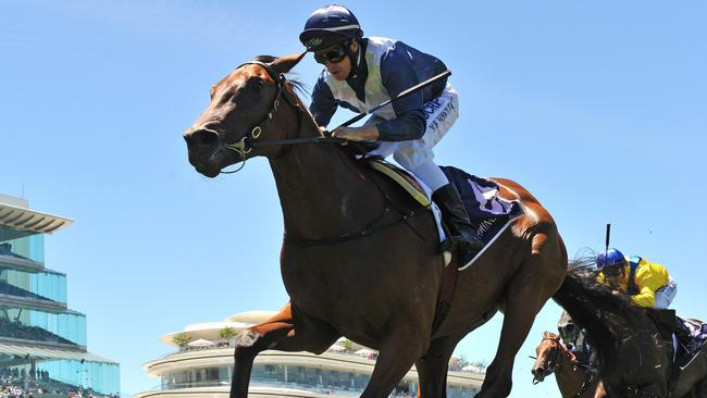 Jedastar will kick-off his spring campaign at The Valley on Saturday. Picture: AAP