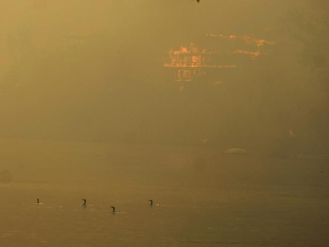 Ducks are seen on the Malibu Lake while a structure burns in Malibu, California. Picture: AP