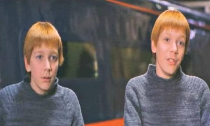 The Weasley twins from Harry Potter look so different without ginger