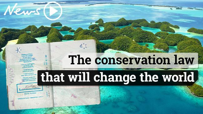 The tiny island leading the world in conservation