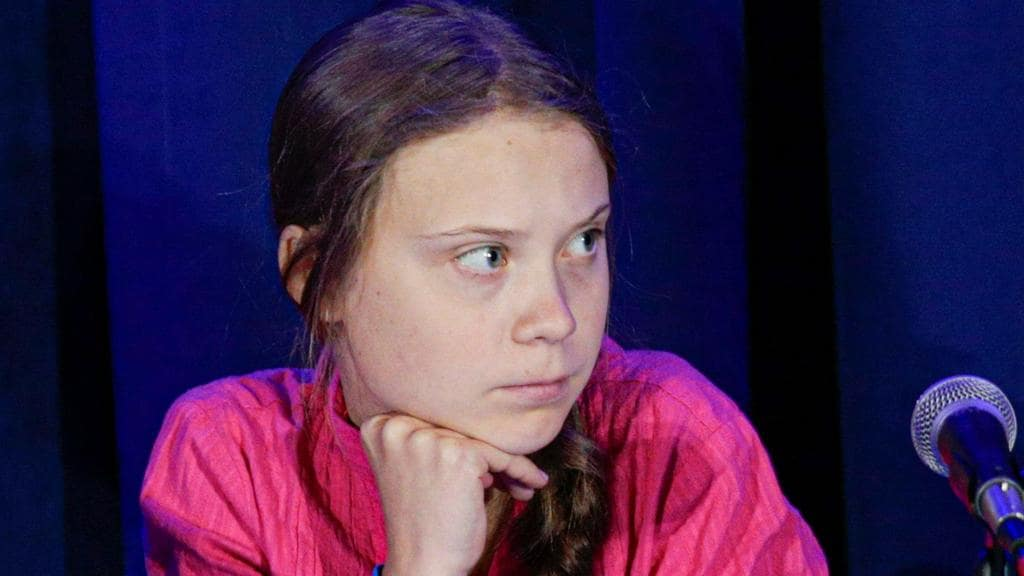 Climate activist Greta Thunberg howled at the United Nations that 'entire ecosystems are collapsing'.