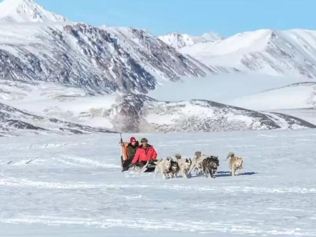 Dog sledding? Yes please. Picture: Hotels.com