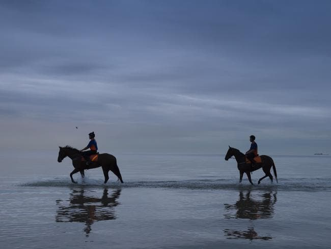 Kinky Boom and Oohood (right) from the Tony McEvoy stable stroll through the shallows at Altona Beach in February. Picture: Getty Images