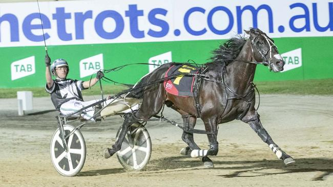 Tiger Tara salutes in Saturday's Inter Dominion final. Picture: Stuart McCormick