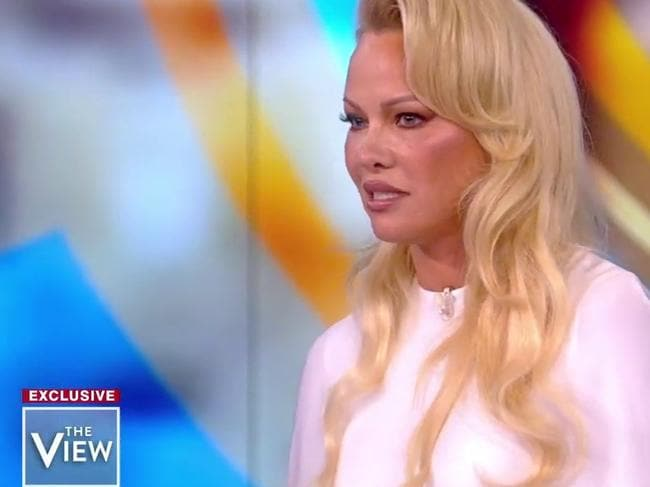 Pamela Anderson, who is a vocal Julian Assange supporter, appeared on The View, where she discussed WikiLeaks and defended Assange when McCain called him a cyberterrorist. Picture: YouTube
