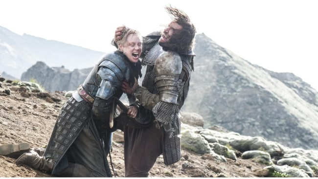 She says she feels Brienne of Tarth and Lyanna are kindred spirits. Image; Getty