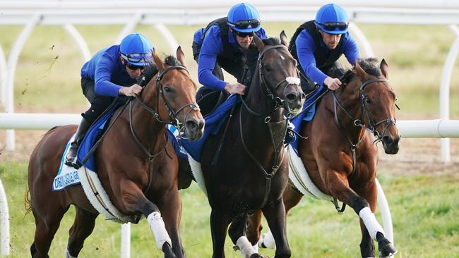 Dream Castle, Red Galileo and Royal Meeting during work at the International Horse Centre at Werribee. Pic: AAP