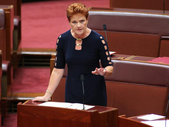 Pauline Hanson has been a strong presence on the political stage since being re-elected last year. Picture: Gary Ramage