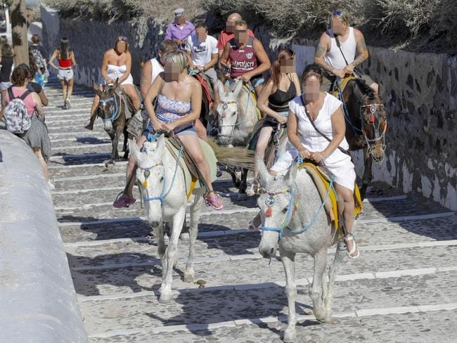 santorini greek government bans fat tourists from riding donkeys