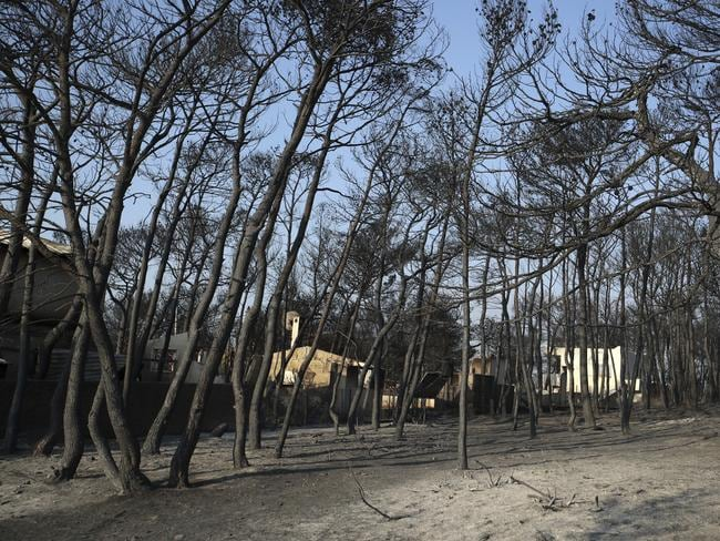 Damaged houses are seen behind the burned forest in Rafina, east of Athens.