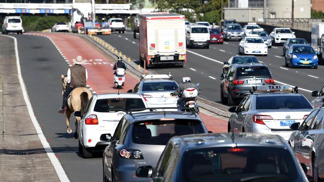 Mr Morris and his steed caused a slight holdup this morning on the Sydney Harbour Bridge. Picture: Dan Himbrechts/AAP