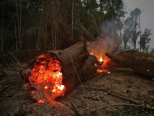 The fire near Abuna, Rondonia state, Brazil. Picture: AFP