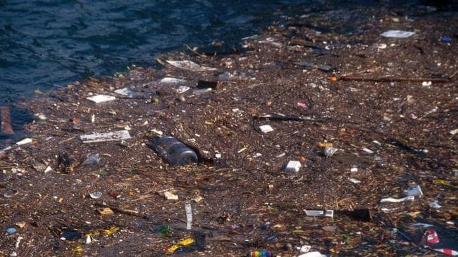Rubbish floating in Sydney Harbour. Picture: Alamy
