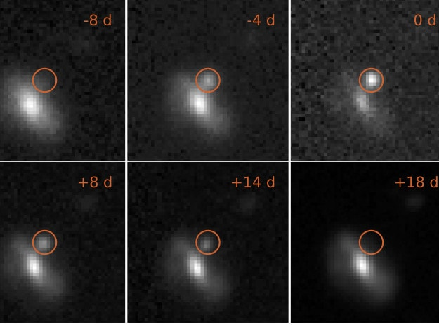 Images of one of the transient events, from 8 days before maximum brightness to 18 days afterwards. This outburst took place at a distance of 4 billion light years. Credit: M. Pursiainen / University of Southampton