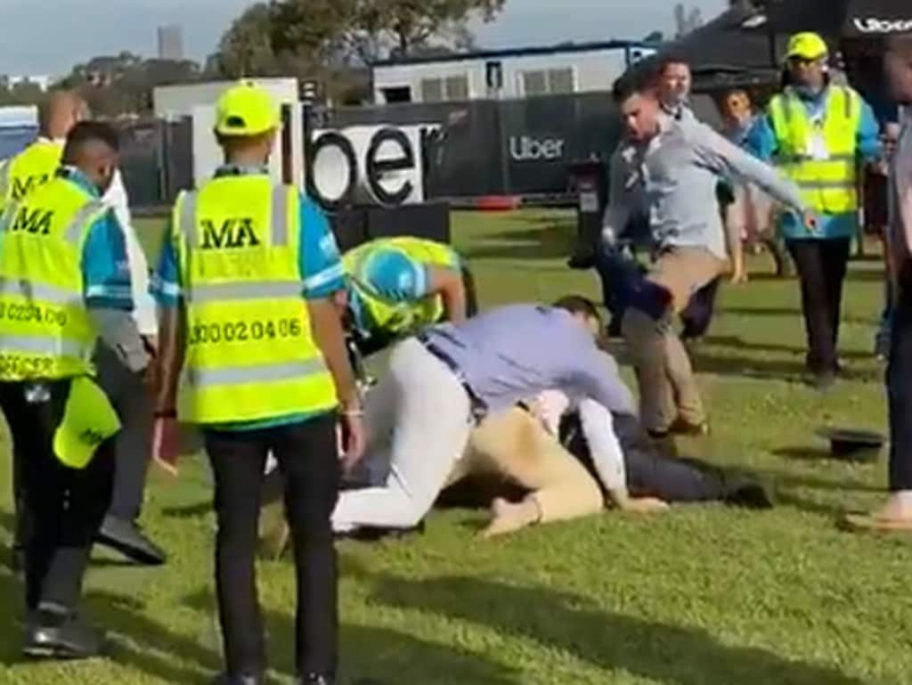 One man threw multiple punches while others wrestled on the grass.