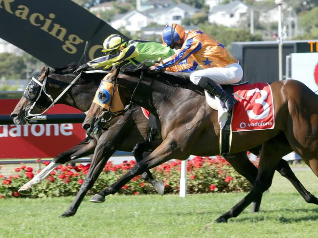 Crown Prosecutor (rails) captures the New Zealand Derby at Ellerslie.