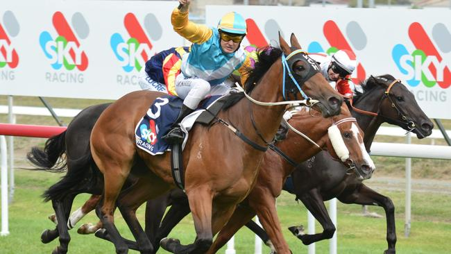 Jason Maskiell wins his biggest race to date, last year's Gold Sovereign Stakes on Tiesto. Picture: Tasracing