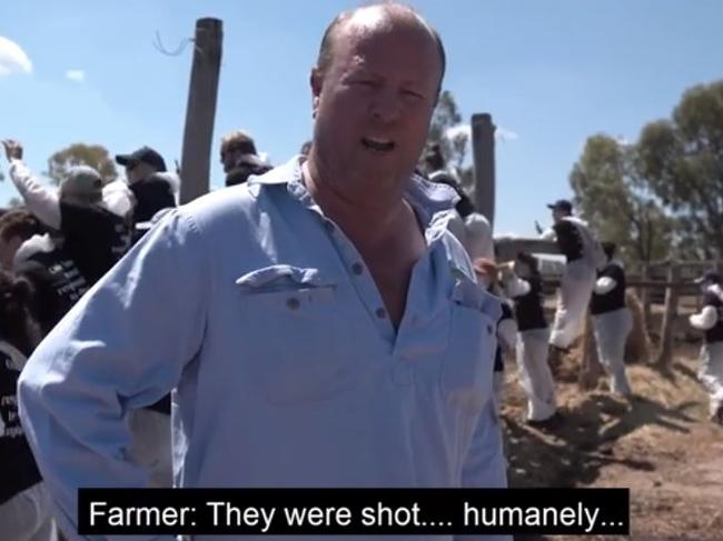 The exhausted farmer answers questions as the group raids his farm and finds dead animals.