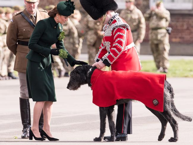 Kate gives Domhnallan the dog a pat. Picture: Getty