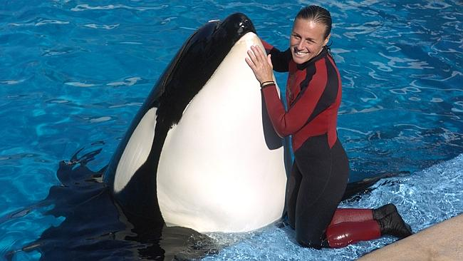 Whale trainer Dawn Brancheau is shown performing at SeaWorld Adventure Park in Florida, 2005.