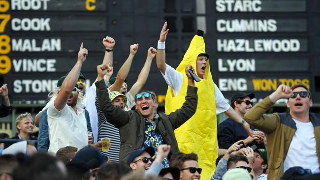 Fans getting into the spirit of things on the hill at Adelaide Oval.