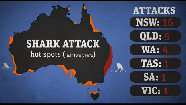 Over the past few years Northern NSW has been the location of the majority of shark attacks.