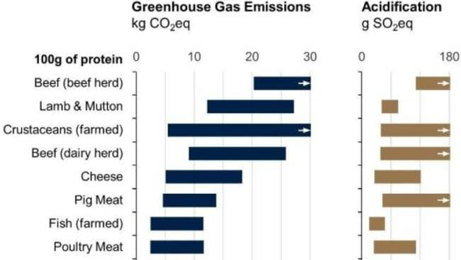 The red meat industry is by the worst for Co2 emissions. Supplied: Joseph Poore