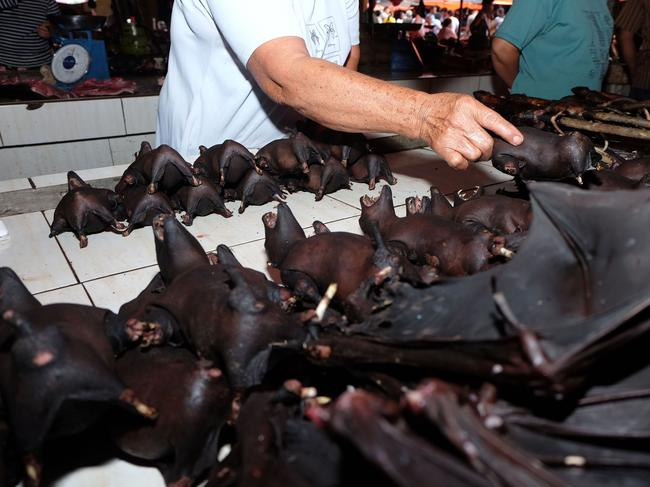 This photo taken in February shows a vendor selling bats at the Tomohon Extreme Meat market on Sulawesi island, Indonesia. Picture: Ronny Adolof Buol/AFP