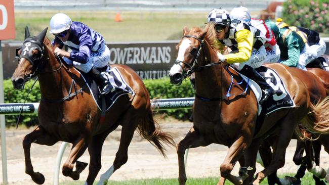 Pandemonium, left, is ready to peak in the Kembla Grange Classic, says co-trainer Adrian Bott.