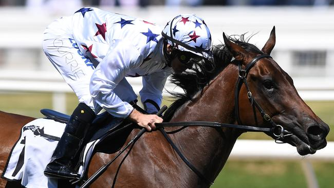 Jockey Luke Currie rides Sunlight to victory. Picture: AAP