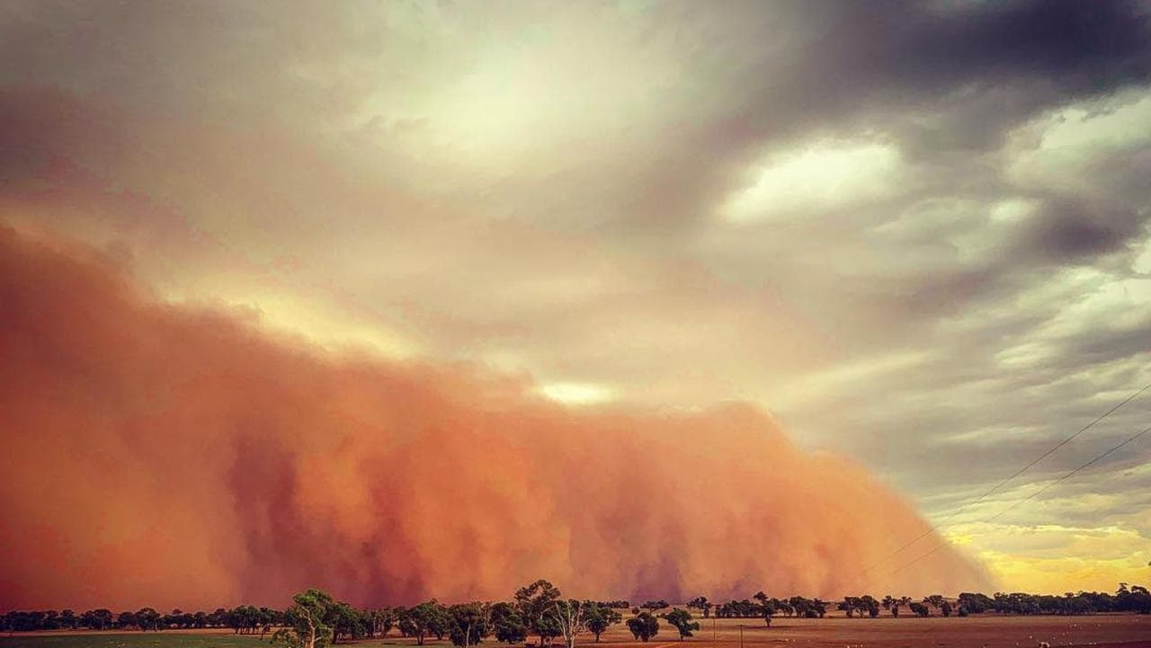 A dust storm moves farmland at Junee, NSW in March. Picture: @thepastyfarmer Source: Instagram