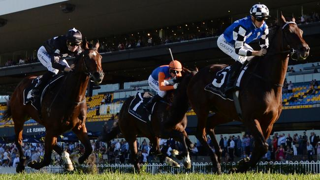 Our Century is the horse to beat in the W.J. McKell Cup. Picture: AAP