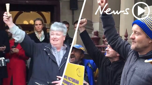 Campaigners celebrate following Pell's appeal dismissal