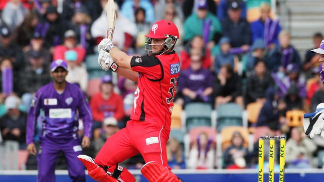 Michael Hill played for the Melbourne Renegades, and the Hobart Hurricanes, in the Big Bash League.