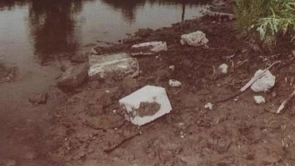 A fisherman spotted the blocks holding Leslie Mahaffy's body parts (above) after the waters receded on the lake.