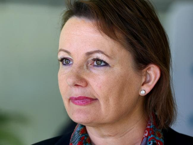 Federal Minister for Health Sussan Ley has apologised to families affected by the administrative error. Picture: David Clark.