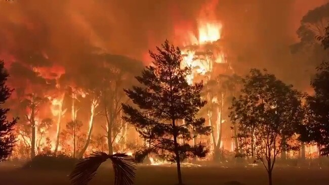 Fire crew were battling towering 16-17 metre flames at Mt Tomah in the Blue Mountains National Park overnight. Picture: NSW RFS