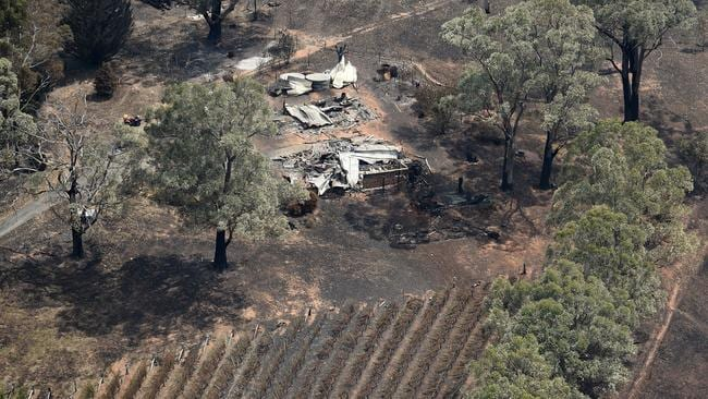 The remains of a vineyard in the Adelaide Hills bushfire zone. Picture: Naomi Jellicoe