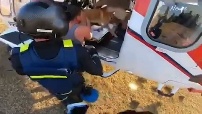 Dramatic helicopter rescue from Sarabah bushfire