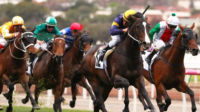 Grunt returned to winning form at Flemington. Picture: AAP
