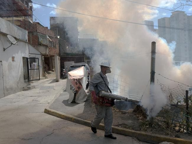 A health worker fumigates against Aedes Aegypti mosquito in Caracas, Venezuela, where there have been 4,700 suspected cases of the Zika virus. Picture: Juan Barreto/AFP