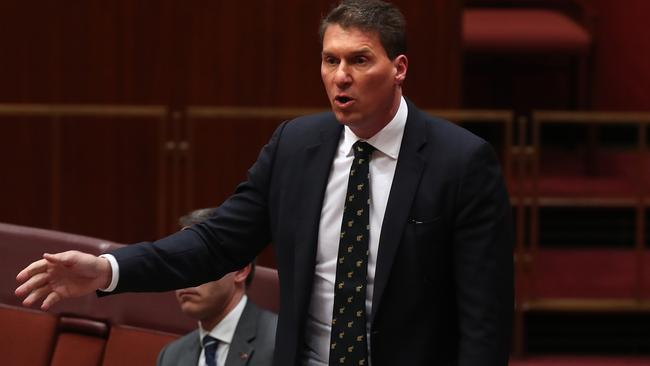 Australian Conservatives leader Cory Bernardi pushing for burqa ban in airport and Centrelink. Picture Kym Smith