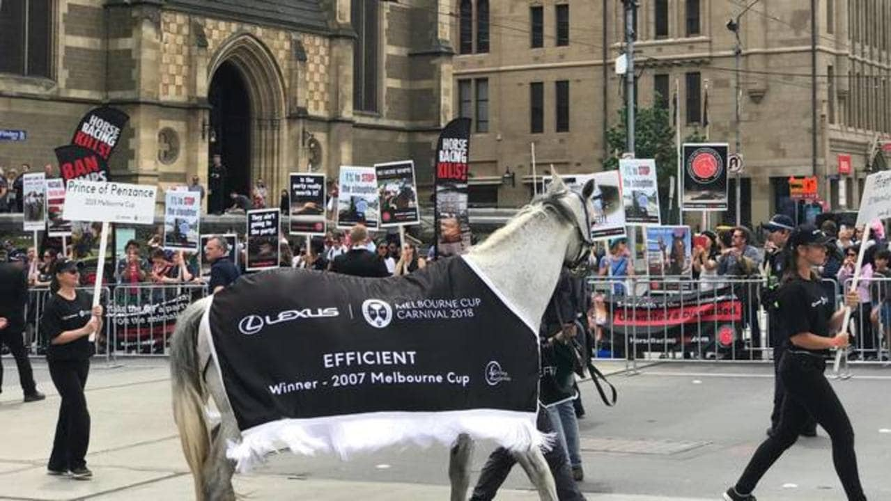 'Horse Racing Kills': Protesters Chant During Melbourne Cup Parade