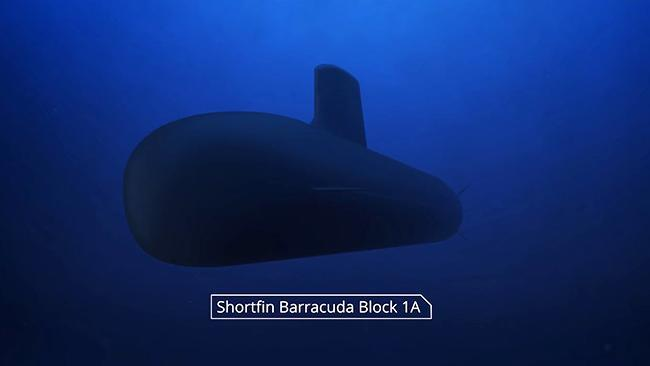 DCNS: Shortfin Barracuda