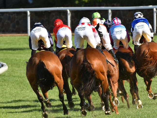 Jockeys and their mounts make their way out of the home straight at The Valley last week.