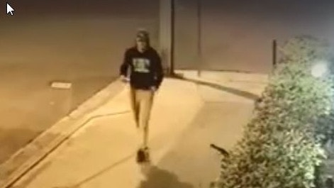Police released CCTV footage of Theo Hayez.